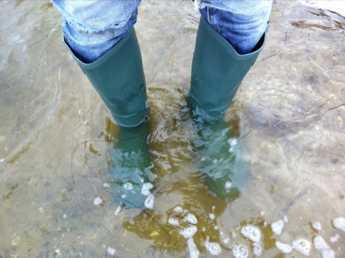 New Wellies