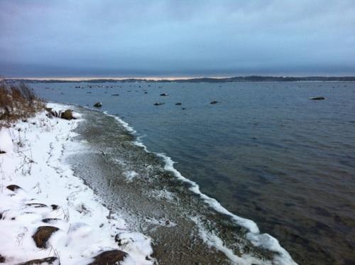 Snowy fjord